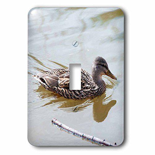 Jos Fauxtographee- Good Morning Bird - A little birdie po... https://www.amazon.com/dp/B01MQ5X12Z/ref=cm_sw_r_pi_dp_x_2w8gybQ3DCQVE