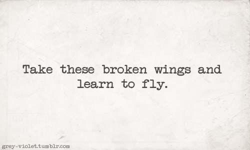 Beatles - Blackbird Lyrics Meaning - Lyric Interpretations.com