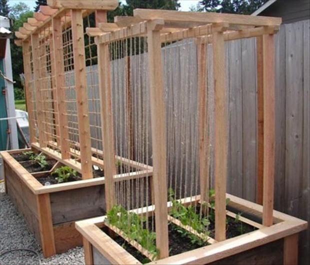 Raised bed gardening with rope twine trellis for for Garden trellis ideas