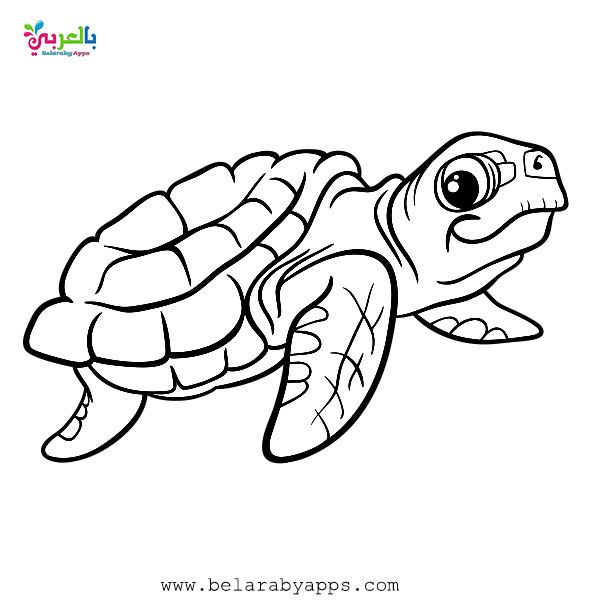 Free Printable Sea Animals Toddler Coloring Page Belarabyapps Shark Coloring Pages Ocean Coloring Pages Cool Coloring Pages