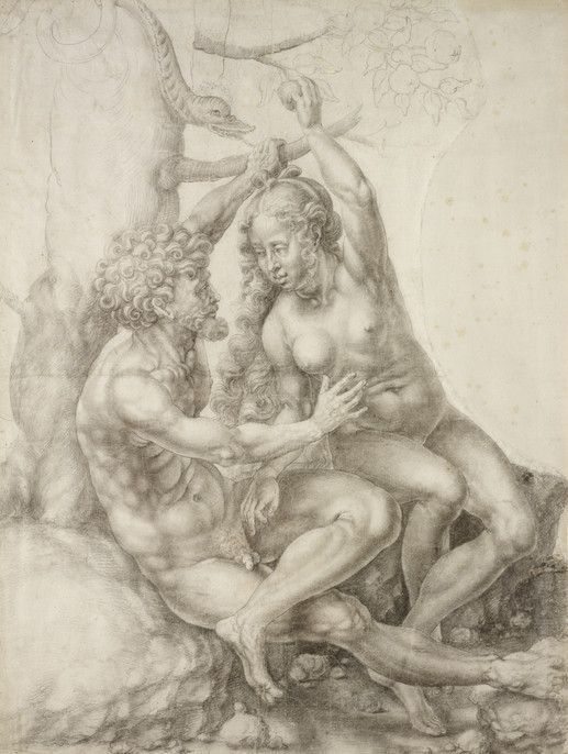 RISD Museum: Jan Gossaert, Netherlandish, ca. 1472-ca. 1533. Adam and Eve, ca. 1525. Chalk on two sheets joined together. 62.1 x 45.9 cm (24 7/16 x 18 1/16 inches). Walter H. Kimball Fund 48.425