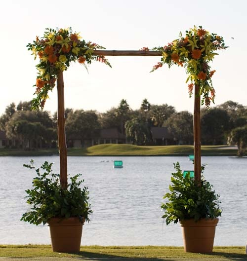 Another great arch idea?