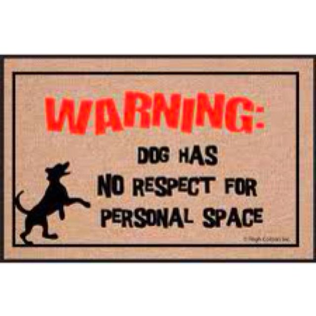 : Personalized Spaces, Welcome Mats, Dogs Personalized, High Cotton, Front Doors, Spaces Doormats, House, Labs Puppies, Cotton Dogs