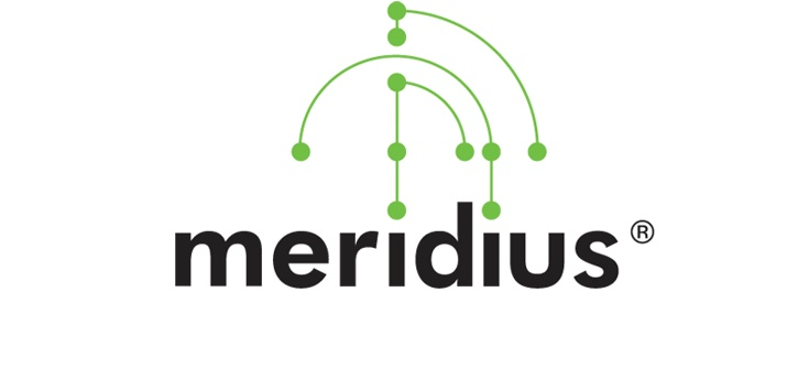 Meridius logo designed to reflect the Chinese healing process of using points of the body