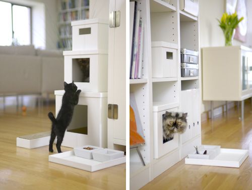 Recycle those boxes your kitties love so much.