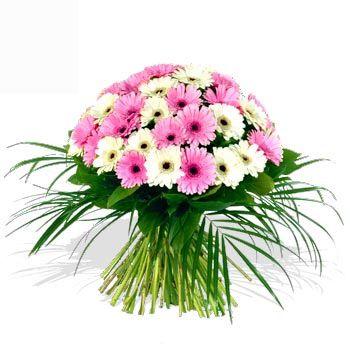 Romantico bouquet di gerbere rosa e bianche arricchito da foglie verdi particolari