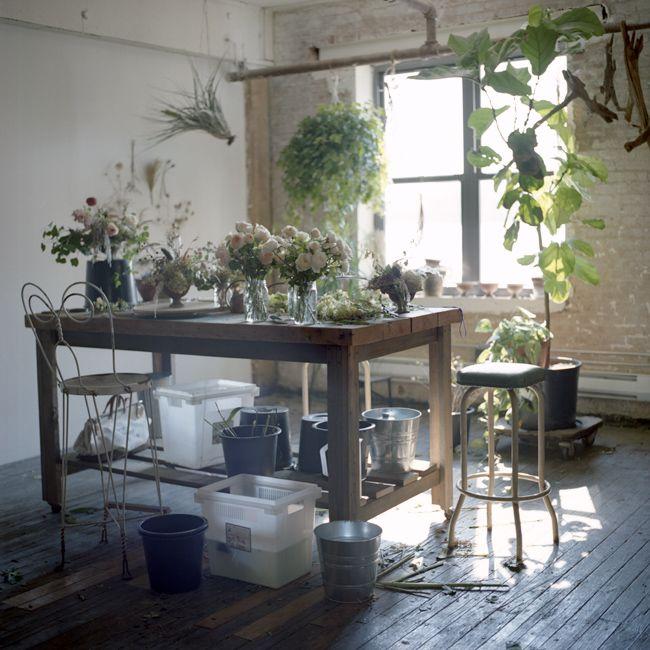 25+ Best Ideas About Flower Shop Interiors On Pinterest