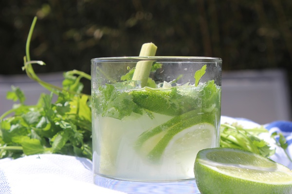 ... lime, 2 stalks lemongrass, 1/2 c sugar, 3 oz gin, club soda. | Drinks