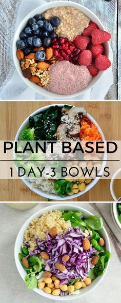 Plant based recipes, vegan recipes, healthy gluten free vegan meal ideas! www.VeganFoodDaily.com