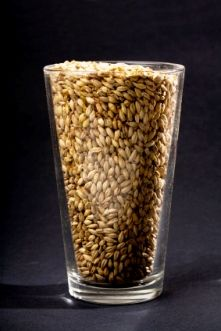 Converting all grain recipes to extract and vice versa