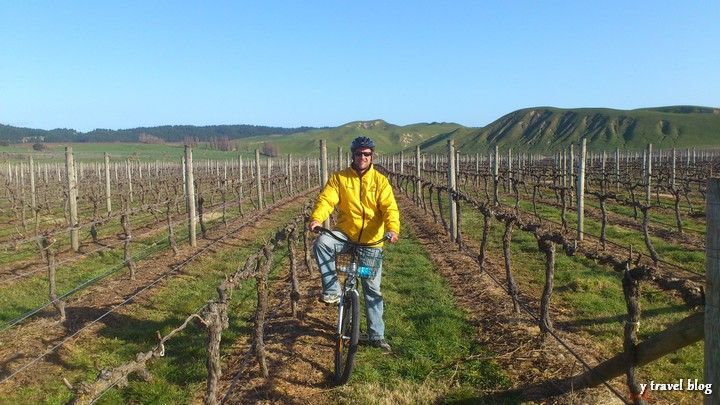 Craig from yTravelBlog.com explores the Hawke's Bay wineries by bycycle