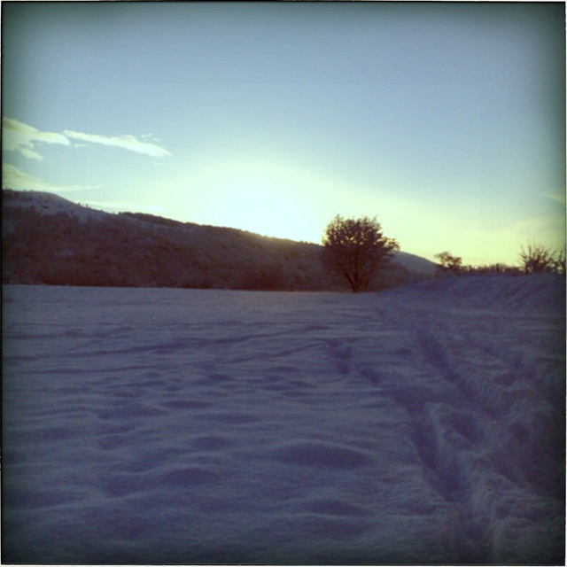 Snow. Home. Cymru.