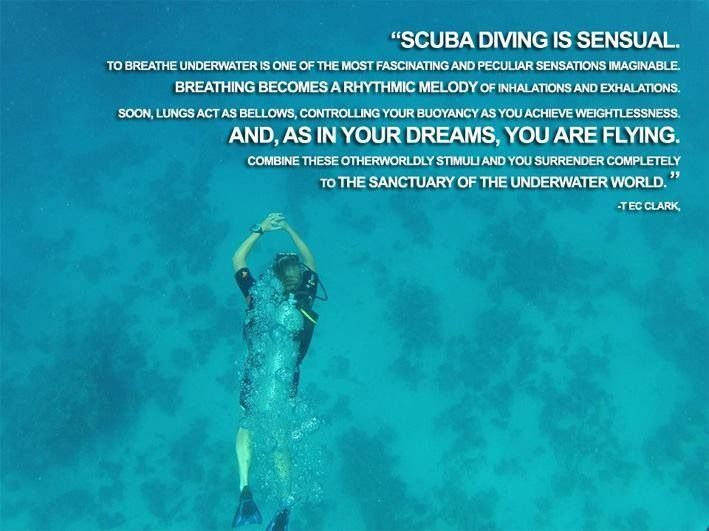 This quote is seriously so true. I could scuba dive in a pool and be completely happy just being in the water!