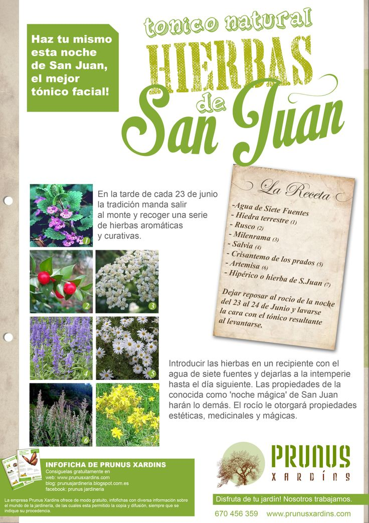 Hierbas de San Juan. Prunus Jardineros