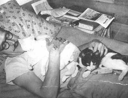 Andrzej Bobkowski z kotami w Gwatemali