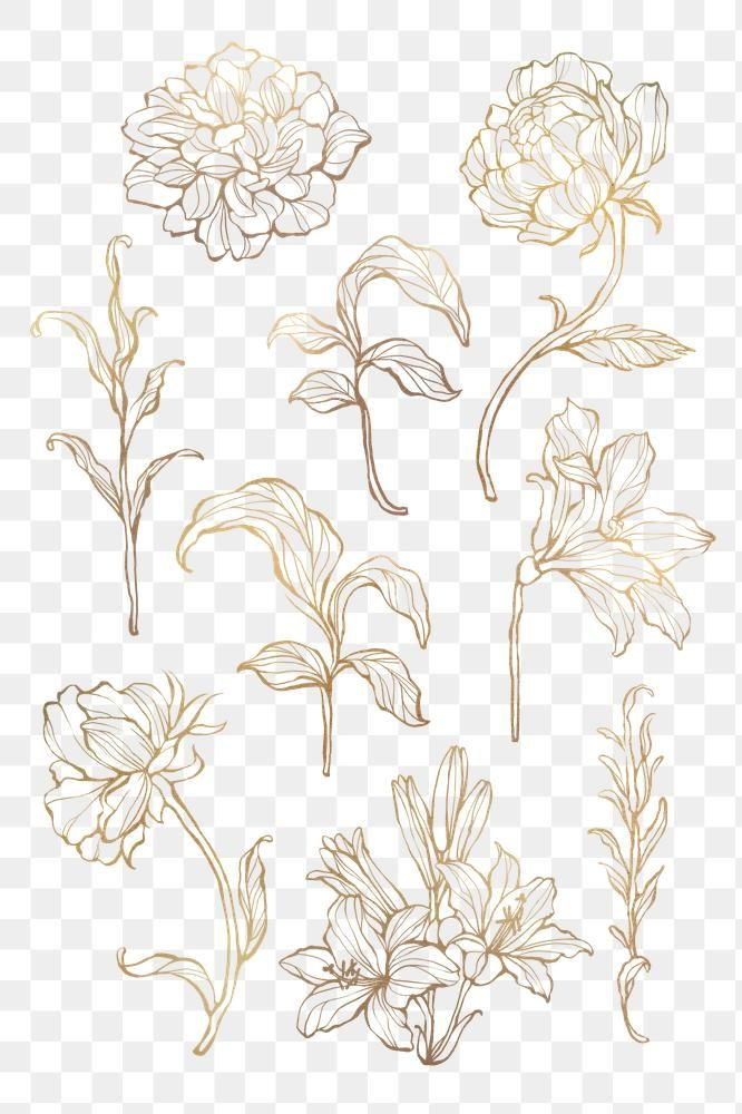 Gold Floral Outline On Marble Background Premium Image By Rawpixel Com Nunny Flower Background Wallpaper Gold Wallpaper Background Floral Background