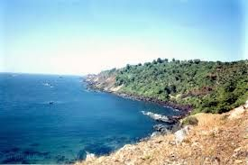 The Bat island of Goa is situated on the west of the state of Goa. The Island is situated at a distance of around a kilometer from the Baina beach of Vasco Da Gama. The Bat Island is a great place for visit by private yacht or speed boat.
