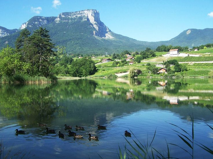 Lac de St André et vignoble des Marches http://www.tourisme.fr/destination/158/sud-est/rhone-alpes/savoie-mont-blanc/coeur-de-savoie.htm Crédit : Savoie Mont Blanc / Teso-Quenard