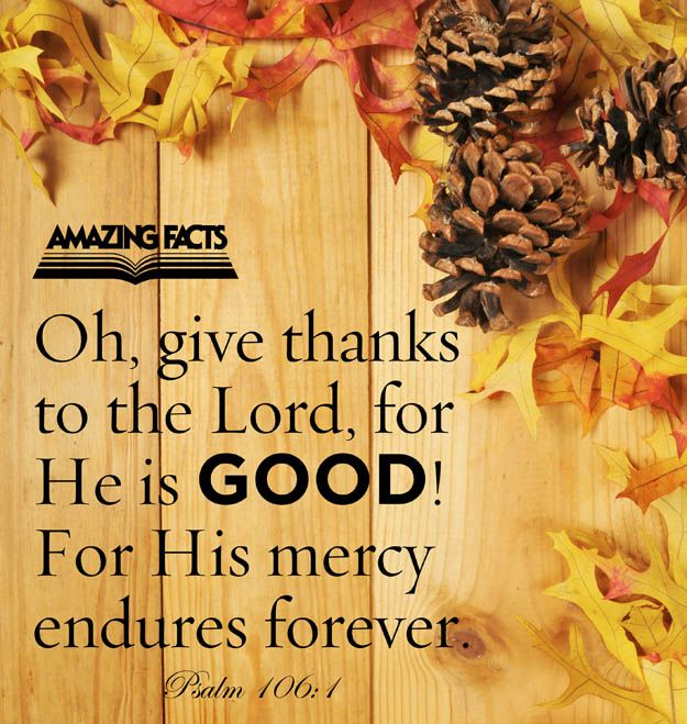 Praise ye the LORD. O give thanks unto the LORD; for he is good: for his mercy endureth for ever.  (Psalms 106:1)