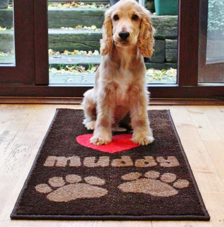 I LOVE MUDDY PAWS door mat and floor mat barrier rug from www.blissandbloom.co.uk