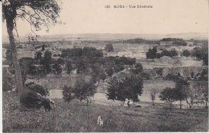 Unknown French Publisher Postcard - 120 - Blida, Vue Générale