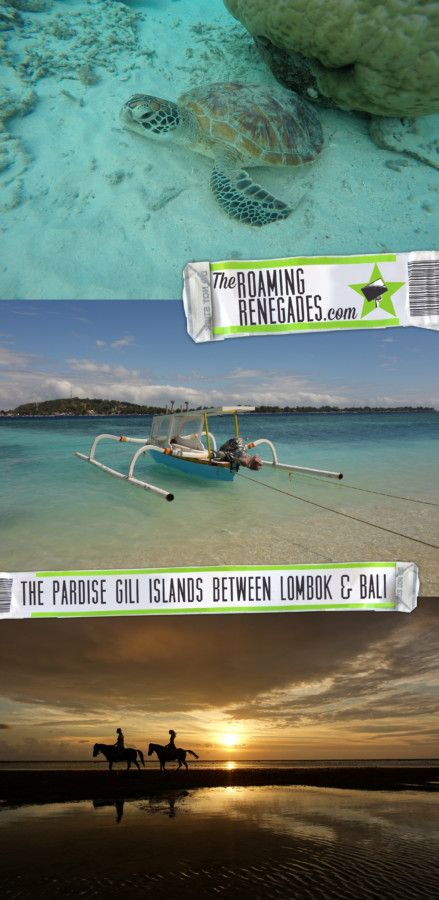 A guide to the unbelievable paradise Gili islands in between Lombok and Bali where you can swim with turtles! Indonesia! > https://theroamingrenegades.com/2017/11/gili-islands-indonesia-lombok-bali.html | #Bali #Indonesia #Lombok #gilit #giliislands #beach #sea #turtle #vacation #paradise #sunset #boat #nature #beautiful #islandhopping #travel #backpacking