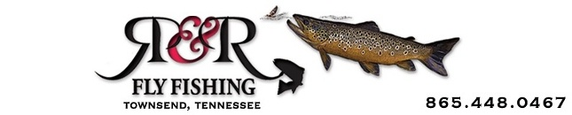 A friend of mine from Casting for Recovery, along with her husband, run this guide service in Townsend, TN. (Website has fishing report, articles, videos, books, etc.)