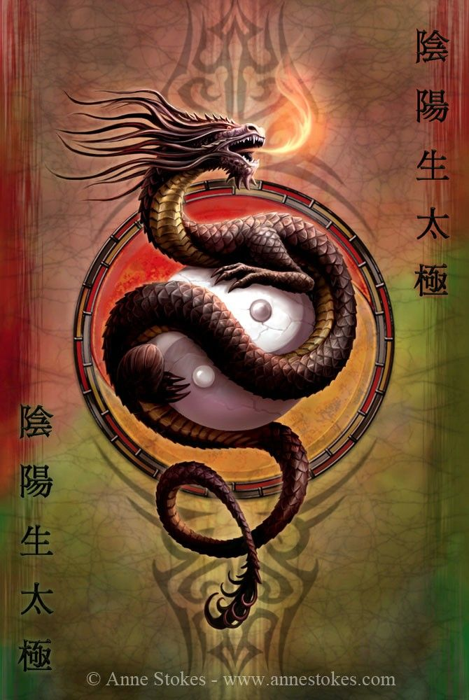 Yin Yang Protector Anne Stokes :))))