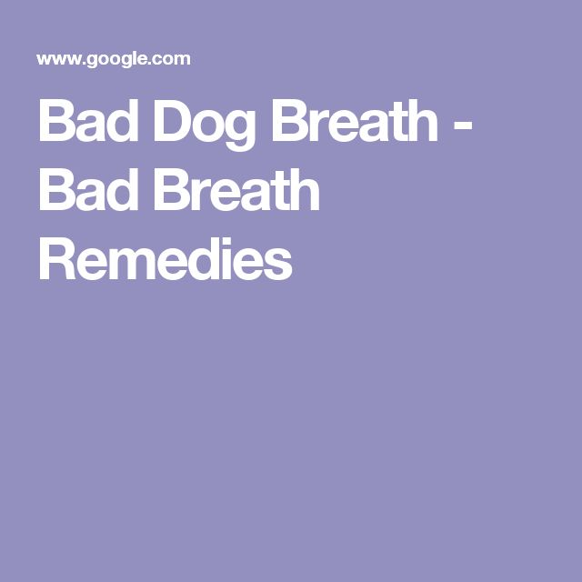 Bad Dog Breath - Bad Breath Remedies