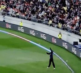 Daniel Vettori leaps and takes a great catch