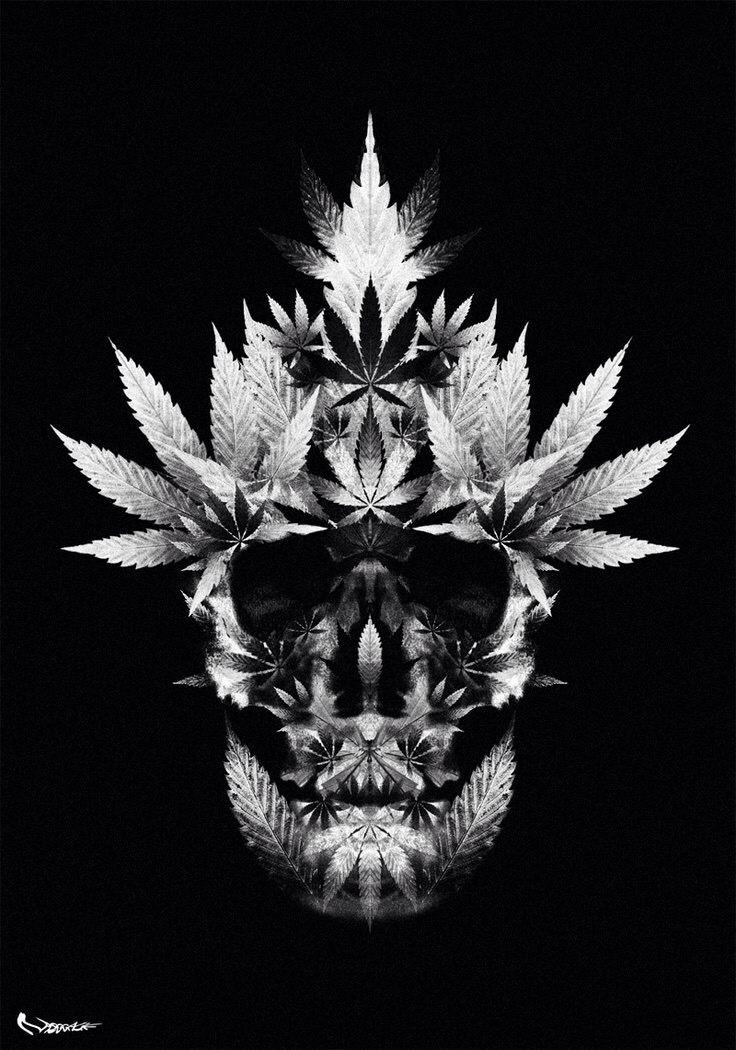 pot leaf skull marijuana art quotes etcetera pinterest tattoo and body art. Black Bedroom Furniture Sets. Home Design Ideas