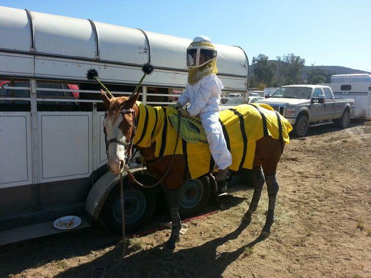 The beekeeper, horse costume show 2013.