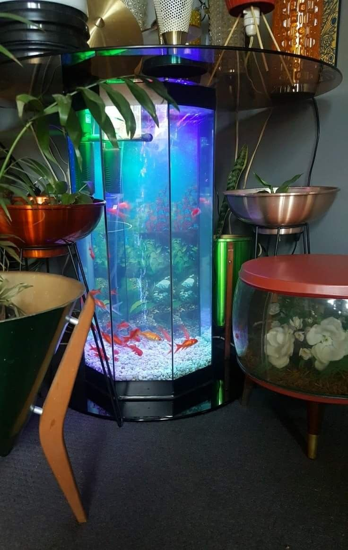 Dining Table Fish Tank In 2019 Coffee
