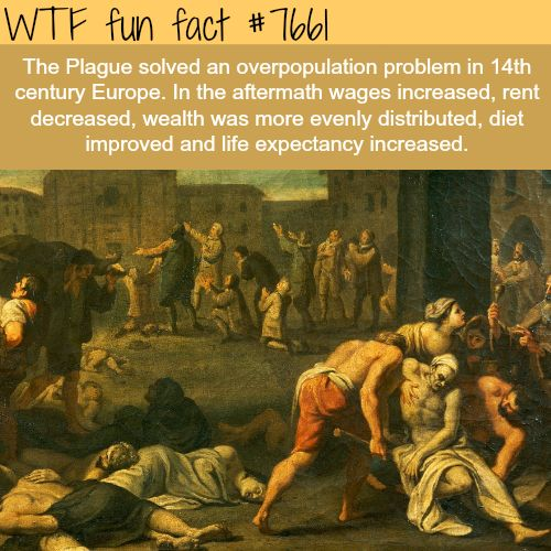 The plague - FACTS