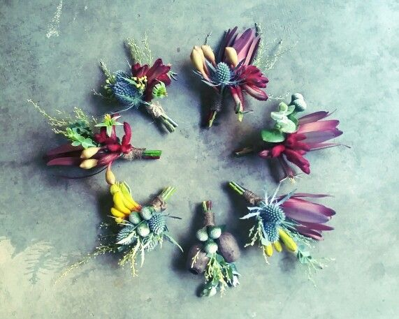 Native button holes, rustic wedding, australian native flowers, Leucadendron, kangaroo paw, gum, flowering gum, Eryngium