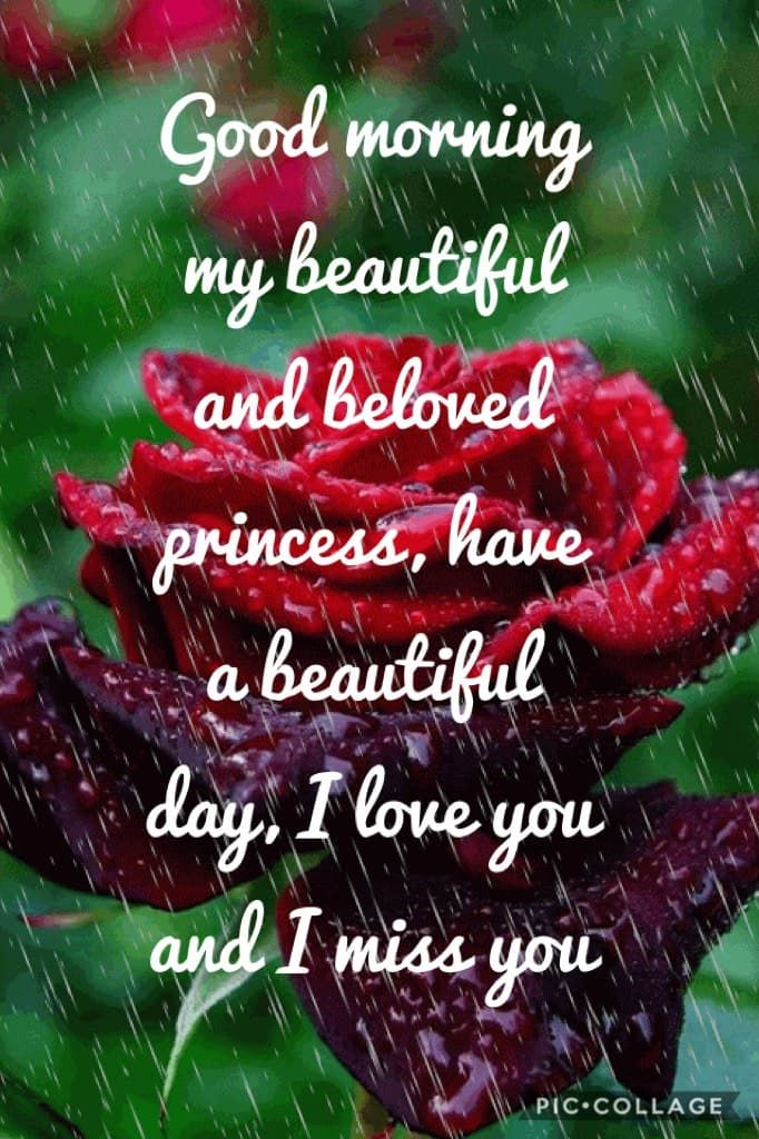 Good Morning My Beautiful And Beloved Princess Have A Beautiful Day