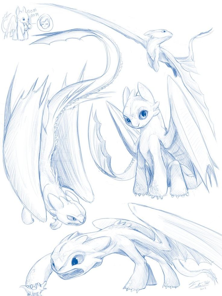 Toothless Sketches by Tsitra360 on deviantART