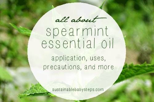 Learn how to use spearmint essential oil for digestive health, emotional support, and immune boosting, via SustainableBabySteps.com