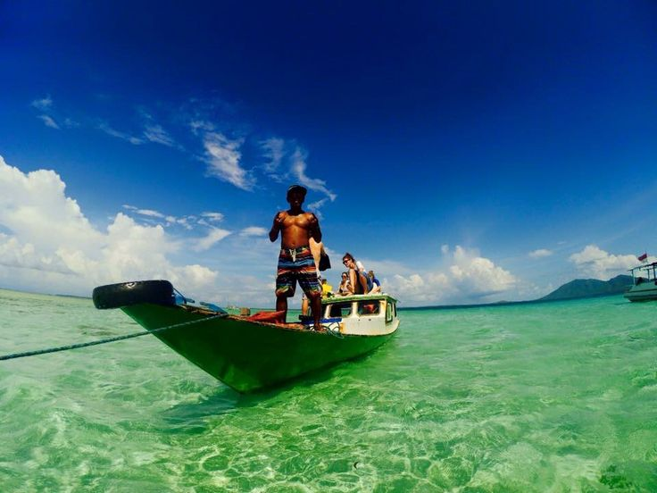 Senorkling trip karimunjawa island Indonesia Alladinkarimunjawa  Tlp:081325535881 WA:+6281325535881 Pinbb:5D6D5665 Join us open trip karimunjawa