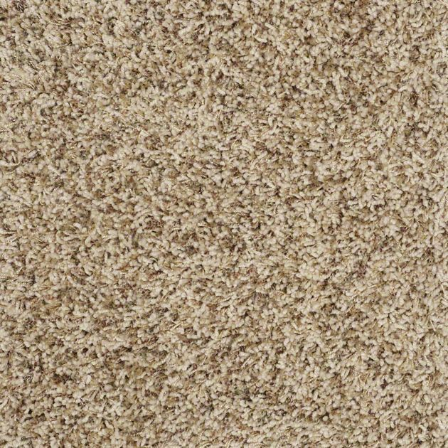 25 Best Carpet Images On Pinterest Carpet Ideas