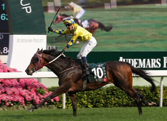 It's been nearly eight months since he's been seen at the races, but reigning Hong Kong Horse of the Year Werther (NZ) (Tavistock {NZ}) is set to make his seasonal debut in the G1 Stewards' …