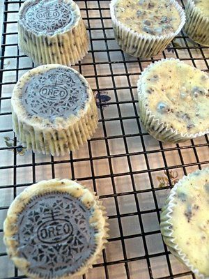 Martha Stewart's Cookies and Cream Cheesecakes