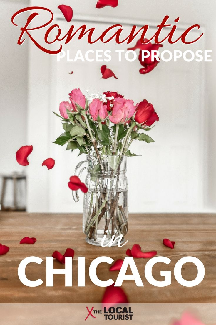 "Have you found ""the one"" and want to make it official? Here are the most romantic places to propose in Chicago. #USA"