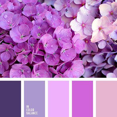 бледно-лиловый, бледно-розовый, бледно-фиолетовый, дизайнерские палитры, лиловый цвет, оттенки фиолетового, подбор цвета, пурпурный, розовый, сиреневый, темно-пурпурный, темно-фиолетовый, цвет гортензии, цвет фиолетовых орхидей, цветовое