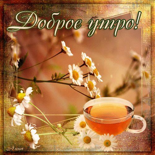 Добренькое утречко - Доброе утро