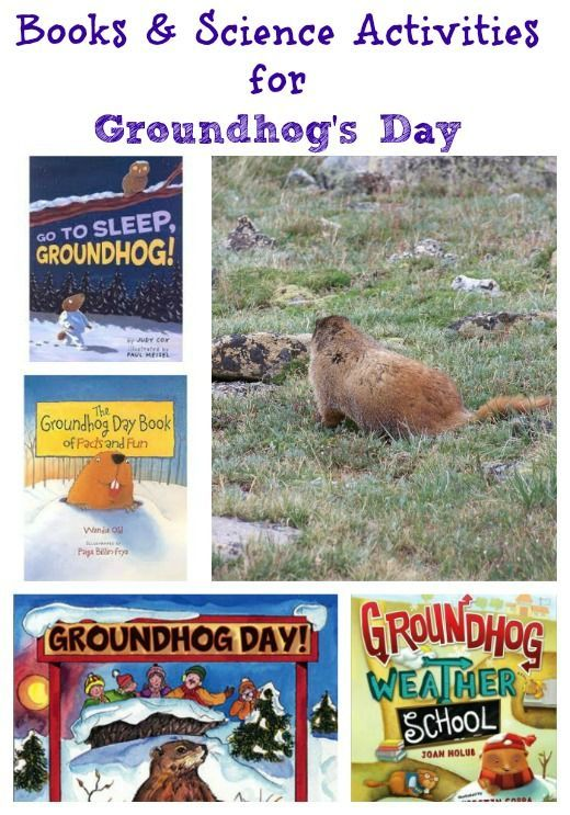 Books & fun science experiments that explore shadows and weather predictions for Groundhog's Day!