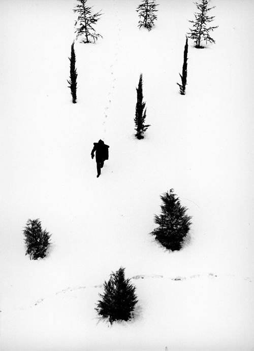 Alfredo Camisa, 1956, snow, men, winter, trees
