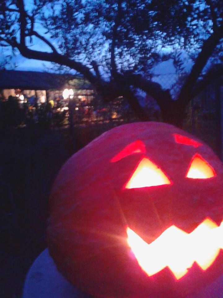 #halloween zucche intagliate