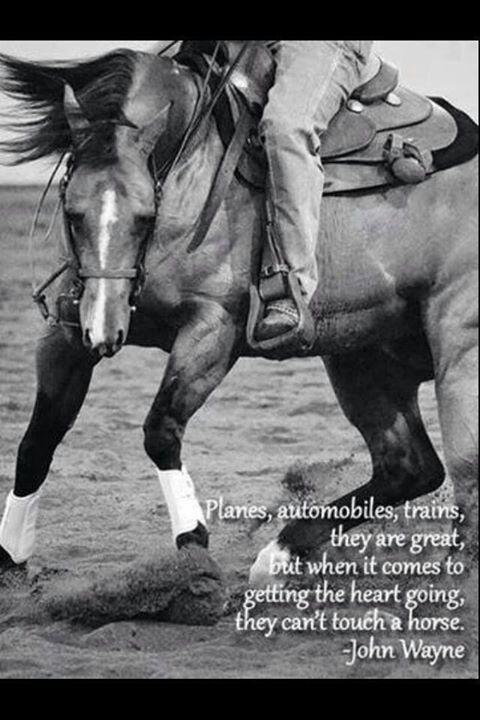 John wayne quote on horses