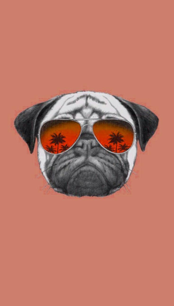 Wallpaper Pug Tumblr!! Papel de parede Pug Tumblr!! Segue aí q tem muuitooo maais!!!❤❤❤🐶🐶 -WallpaperTumblr